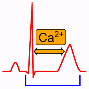 Hypocalcemia and Electrocardiogram