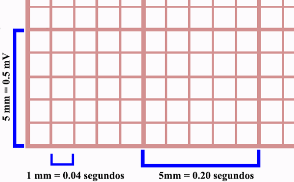 Medidas do papel de eletrocardiograma